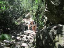 Caroline on the ladders - Skeleton Gorge