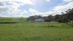 Vineyard Trail - Devon Valley - June 2014_0043