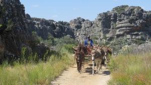 Cederberg Heritage Route - Dec 2014_0008 (2)