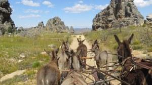 Cederberg Heritage Route - Dec 2014_0020 (2)