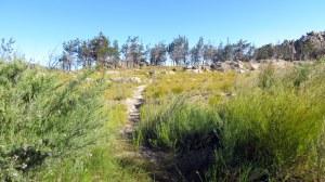 Cederberg Heritage Route - Dec 2014_0064