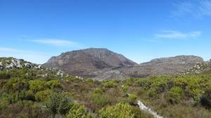 Vlakkenberg Ridge - Fire aftermath April 2015_0001
