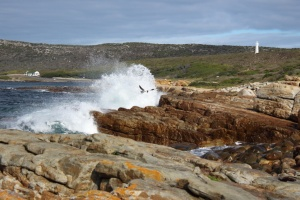 Cape Point - Meridian June 2015112